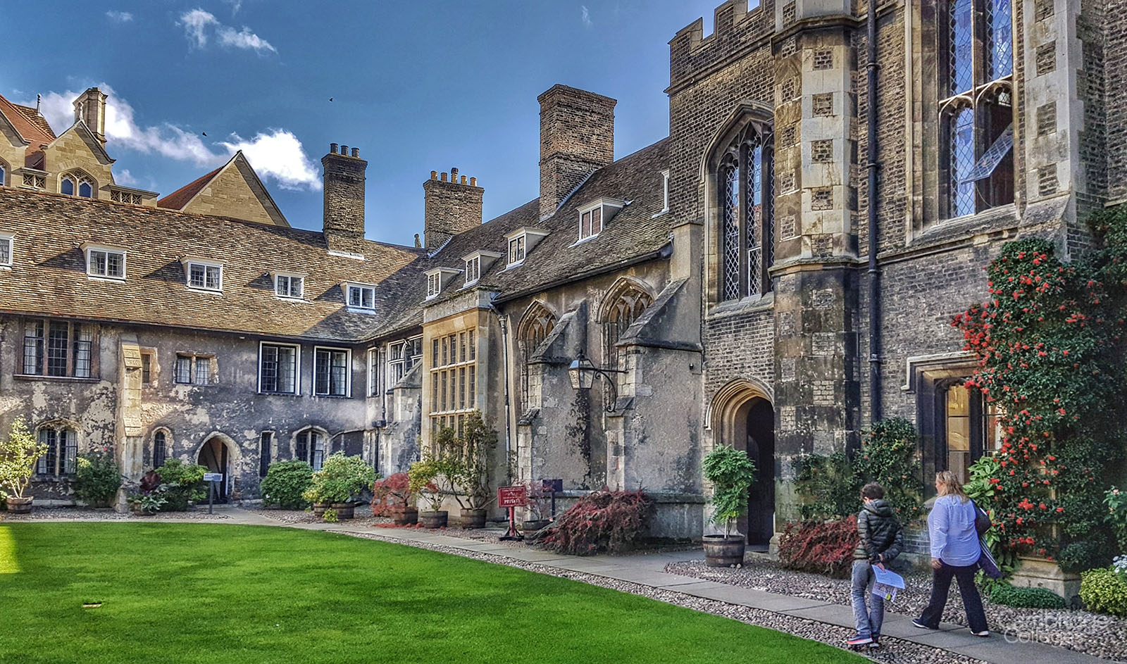 Christ's college old court
