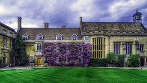 Christ's college Cambridge, with wisteria in full bloom